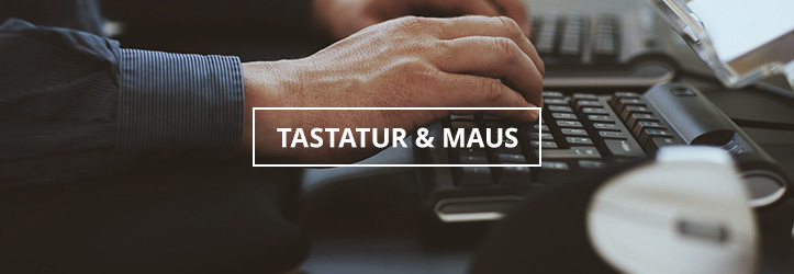 Tastaturen und Mäuse auf ergonomisches.de
